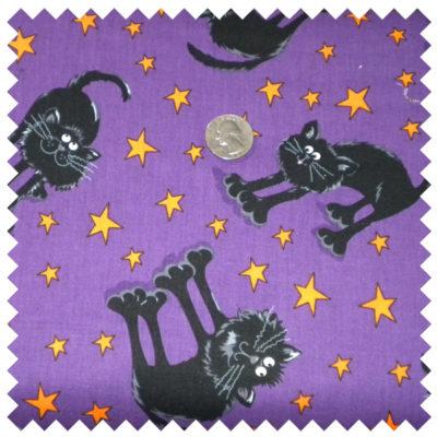 Spooktacular Halloween Kitties